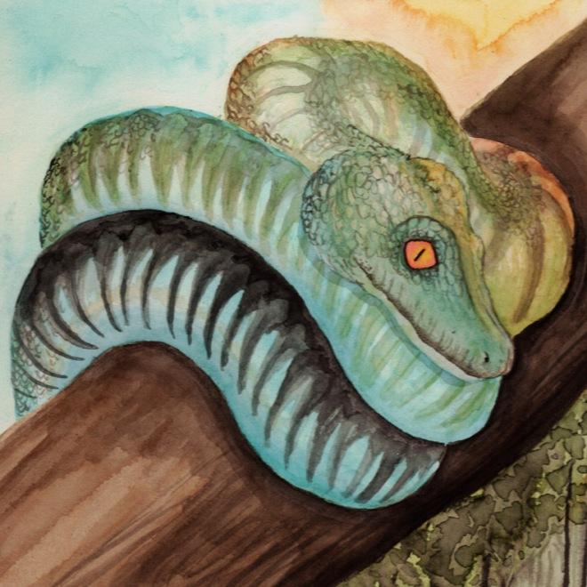 serpent aquarelle